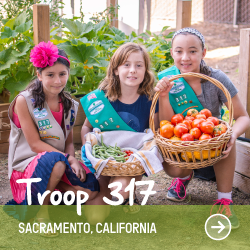 SQ-Troop317